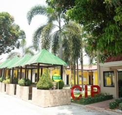 CIP (5)